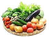 九州 野菜セット (おまかせ新鮮12品以上) (ギフト、プレゼントでも大好評)