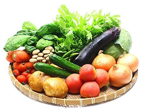 九州 野菜セット (おまかせ新鮮12品以上+ときどきオマケ) (お中元ギフト、プレゼントでも大好評)