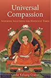 img - for Universal Compassion: Inspiring Solutions for Difficult Times book / textbook / text book