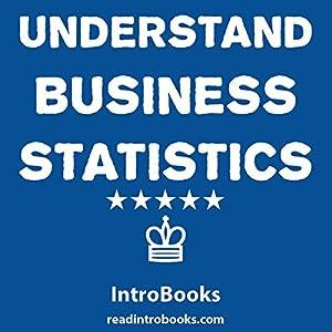 Understand Business Statistics Audiobook