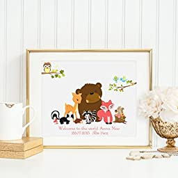 Woodland Animals, Welcome to the world...