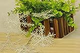 SAMYO クリスマス飾り飾り・パーティ ホワイト 雪の結晶 クリスマス ツリー オーナメント 屋内外、結婚式、学園祭 飾り 雪化粧 12個セット SM-0788 (8.5cm)