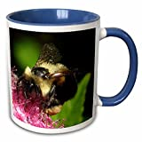 Insects - Honey Bee - Mugs
