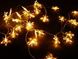 ShanTrip電池式イルミネーションライト星型5M40球LEDガーデンクリスマスハロウィン装飾(5m40球,暖色オレンジ)