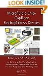 Microfluidic Chip-Capillary Electroph...