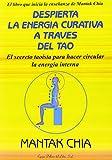 Despierta la energia curativa a traves editado por Luis Carcamo