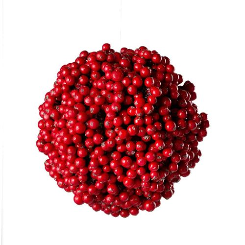 Sage & Co. Christmas Berry Ball