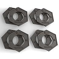 Iron Bull Fractional Plates – Set of…