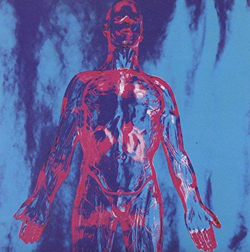 Nirvana - Sliver (The Best Of The Box) - Zortam Music
