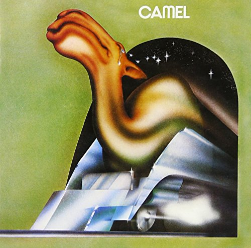 camel-shm-cd