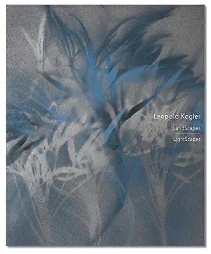 leopold-kogler-landscapes-lightscapes