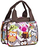 Multicolored Chevron Owls Insulated Lunch Bags