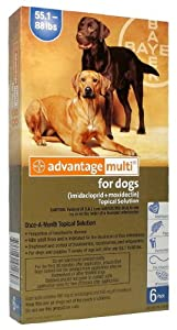 Advantage Multi Canine (Blue) - 55.1-88 lbs - 6 count