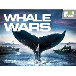 Whale Wars Season 1
