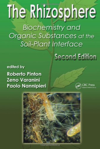 The Rhizosphere: Biochemistry and Organic Substances at the Soil-Plant Interface