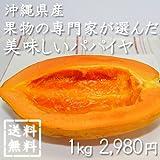 沖縄県産・果物の専門家が選んだ美味しいパパイヤ 1kg ランキングお取り寄せ