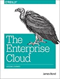 img - for The Enterprise Cloud: Lessons Learned book / textbook / text book