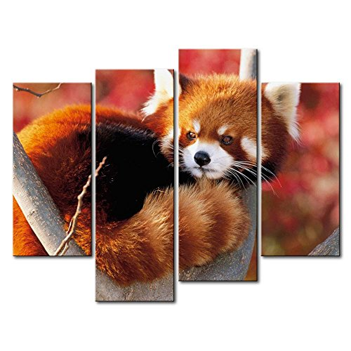 4 Panel Wall Art Painting Red Panda In The Tree Pictures Prints On Canvas Animal The Picture Decor Oil For Home Modern Decoration Print For Decor Gifts