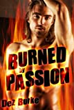 Burned by Passion (BWWM Interracial Romance)