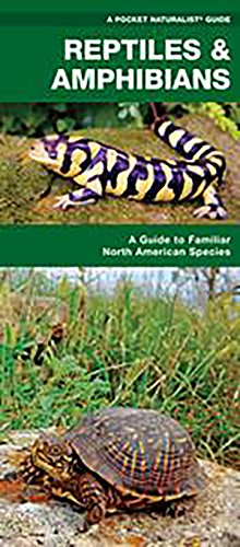 reptiles-amphibians-a-folding-pocket-guide-to-familiar-north-american-species-pocket-naturalist-guid
