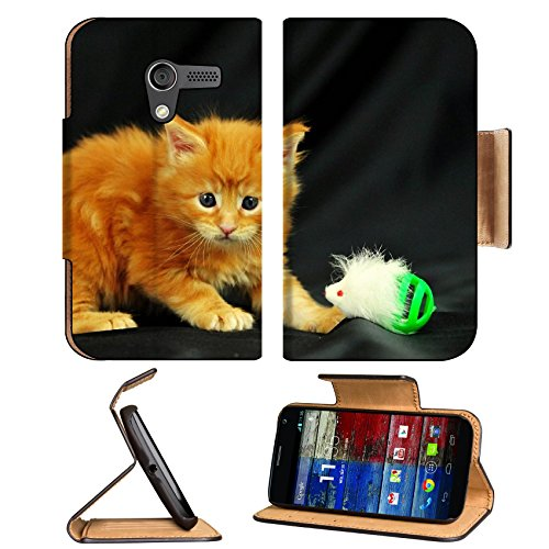 Kitty Little Playful Toy Photo Shoot Motorola Moto X Flip Case Stand Magnetic Cover Open Ports Customized Made To Order Support Ready Premium Deluxe Pu Leather 5 7/16 Inch (138Mm) X 3 1/16 Inch (78Mm) X 9/16 Inch (14Mm) Liil Mobility Cover Professional Mo front-751322