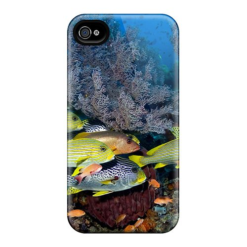 New Style Case Cover Qre4305Bslb Tropical Corals Fish Compatible With Iphone 4/4S Protection Case
