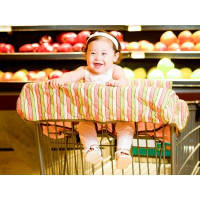Grocery Cart / High Chair Cover Color: Coral / Green front-678611