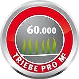 Lawn & Patio - Rasensamen GF Sport Grass 10 kg Sportrasen Sport- und Spielrasen - Join the Green Evolution