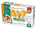 Toy - Ant World