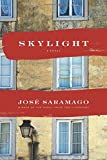 img - for Skylight book / textbook / text book