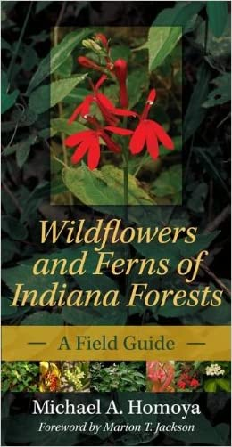 Wildflowers and Ferns of Indiana Forests: A Field Guide (Indiana Natural Science) written by Michael A. Homoya