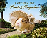 Image of A Guinea Pig Pride & Prejudice