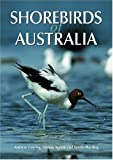 img - for Shorebirds of Australia by Andrew Geering (2007-06-19) book / textbook / text book