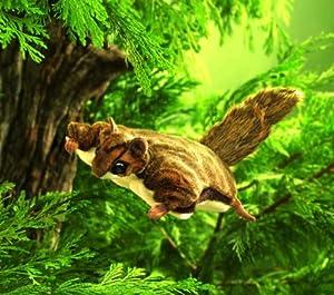 Flying Squirrel by Folkmanis