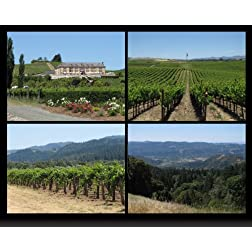 Scenic Napa Valley - Sights &amp; Sounds