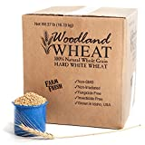 100% Natural Hard White Wheat, Farm Fresh, Grown in Idaho USA, 37 lb, Non-GMO, Non-Irradiated, Insecticide Free, Fungicide Free, Glyphosate Free, Triple Cleaned, Delicious, Woodland Wheat