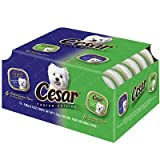 Cesar Canine Cuisine Beef Variety Pack Wet Dog Food