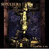 """Chaos a.d.von """"Sepultura"""""""