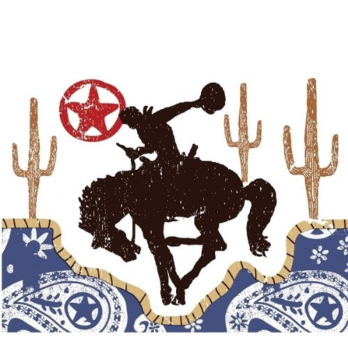 Western Lasso Invitations (8 count) Party Accessory