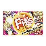 ロッテ Fit's<かめはめ波ワイアン味> 12枚×10個