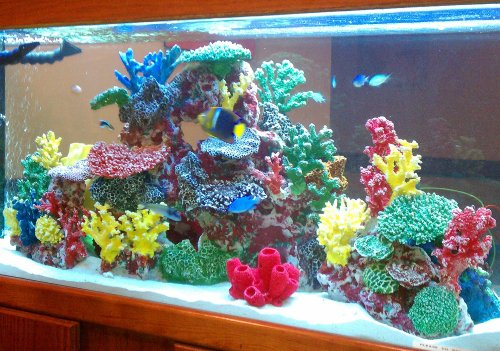 instant reef r034s artificial coral reef aquarium decor. Black Bedroom Furniture Sets. Home Design Ideas