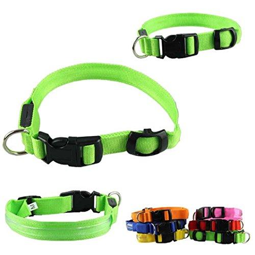 Dzt1968 1 Pc Glow Pet Cat Dog Led Collar Safety Necklace Flashing Lighting (Green, M)