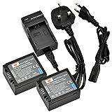 DSTE® 2pcs DMW-BLB13 Rechargeable Li-ion Battery + Charger DC67U for Panasonic DMW-BLB13, DMW-BLB13E, DMW-BLB13GK, and Panasonic Lumix DMC-G1, DMC-G2, DMC-G10, DMC-GF1, DMC-GH1 etc ...