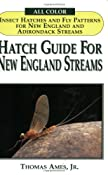 Hatch Guide for New England Streams: Thomas Ames Jr., David B. Tibbetts: 0066066004246: Amazon.com: Books