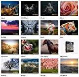 Topaz Labs Complete 16 Plug-Ins Bundle for Photoshop (Mac & Windows) 2015 DOWNLOAD