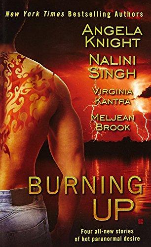 Image of Burning Up (Berkley Sensation)