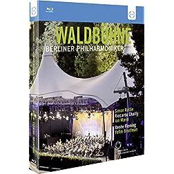 Waldbühne 3 DVD Box [Blu-ray]