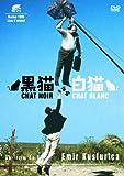 黒猫・白猫 スペシャル・エディション [DVD]