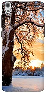 The Racoon Grip Snowy Tree hard plastic printed back case / cover for Lenovo S850