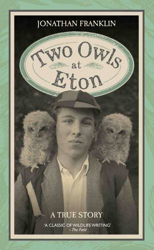 two-owls-at-eton-a-true-story